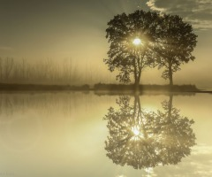 Lezing natuurfotografie door Clifton Buitink