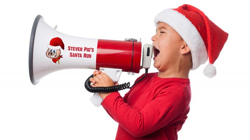 Steven Pig's Santa Run