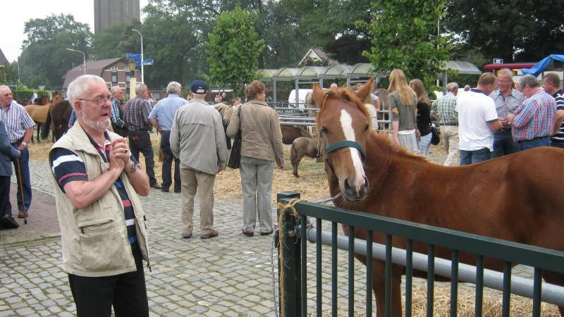 Boerenmarkt in Vriezenveen