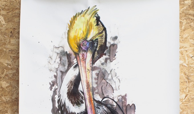 Fascinatie voor vogels: de dierenwereld als inspiratie voor Iris Helene Jansen