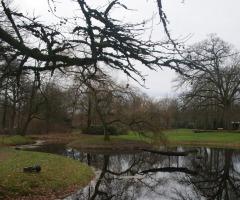 Winterwandeling Park Scholtenhagen