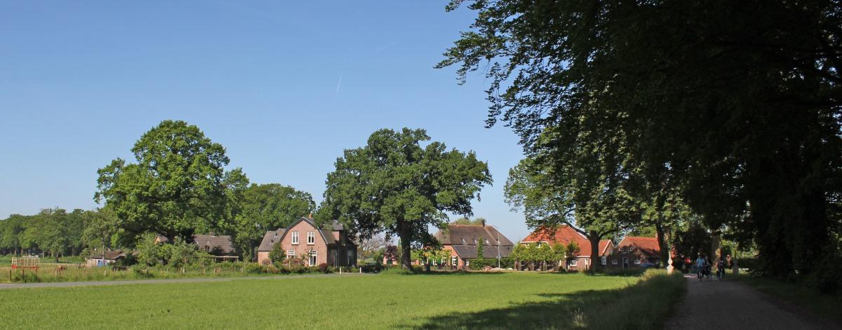 Ommetje Langenbergerveld (3 kilometer)