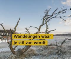 Groene Voornemens Wandeling Twente