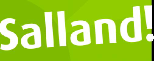 Logo Salland