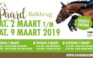 Paard Balkbrug 2019