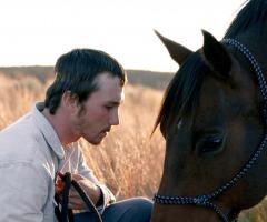 "Filmhuis Denekamp: ""The Rider"""