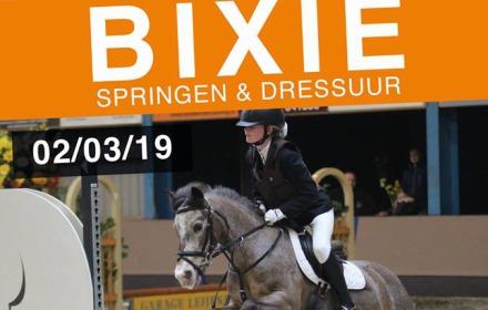 Bixie pony's Bathmen te Paard
