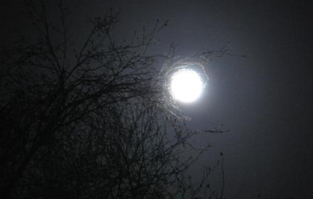 Loop naar de maan GEANNULEERD