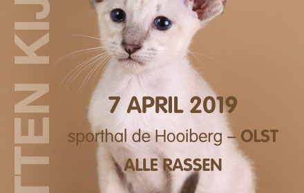 Internationale kattenshow