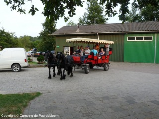 Huifkartocht in Twente bij Erve Hulsbeek