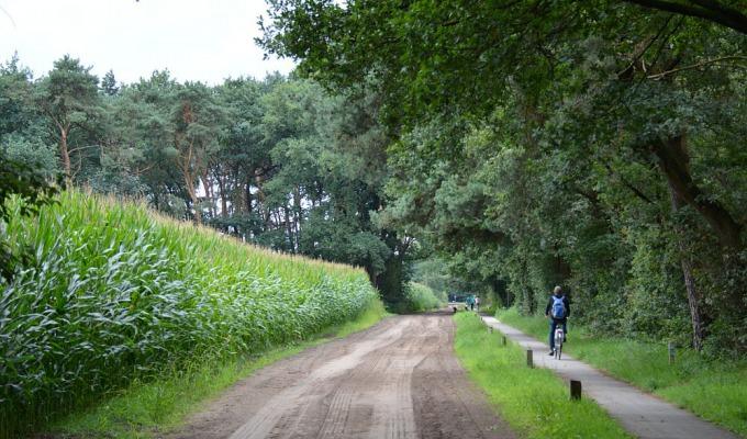 Fietsen bij Ootmarsum, knooppuntroute met tips
