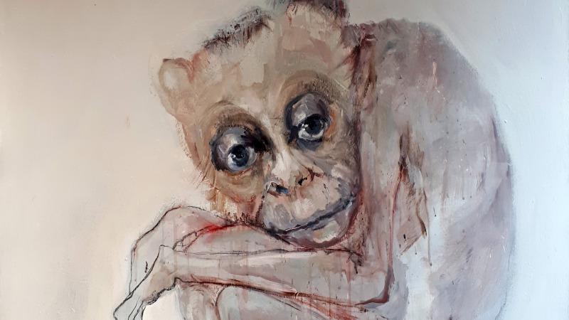 Lente-expositie Galerie Tolg'Art