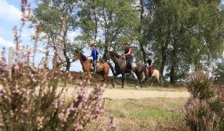 Test paardrijroute