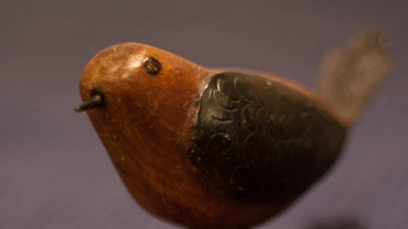 Workshop: Aardse meditatie over vogels