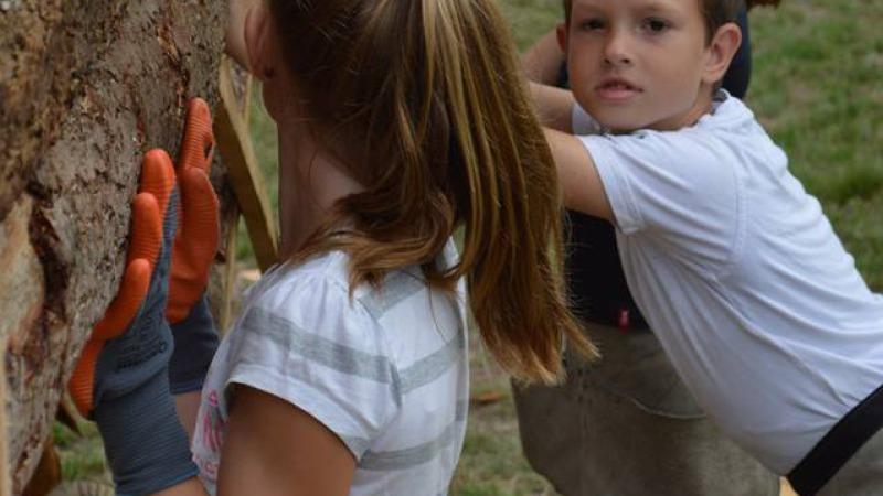 Activiteit: Timmeren bij Huttenland