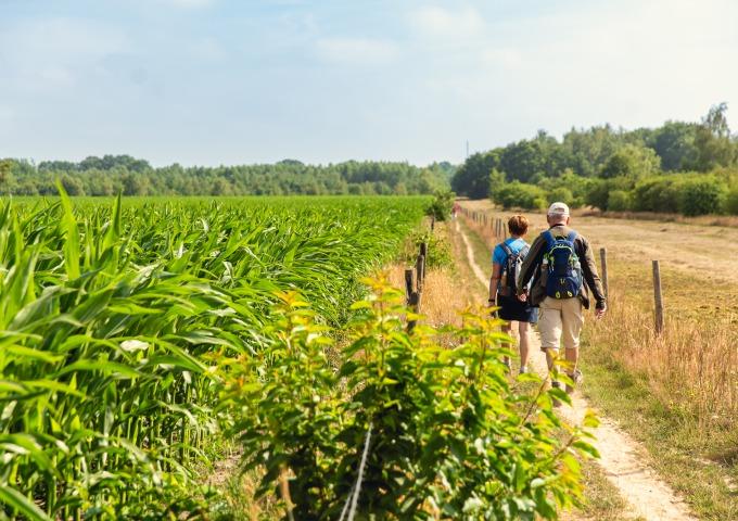 De 8 mooiste wandelroutes van Salland