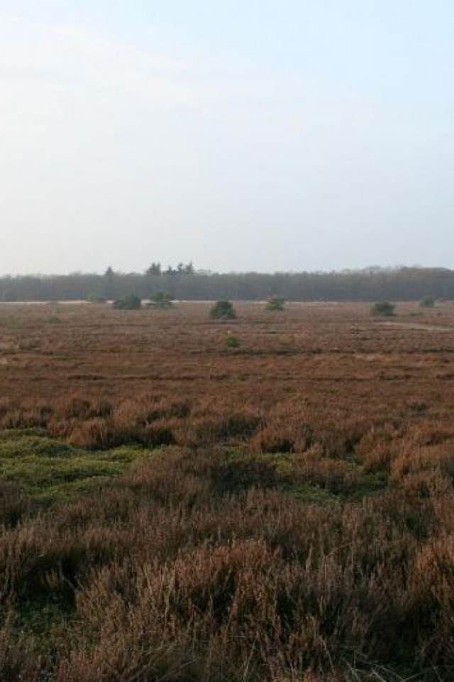 Zandloper Holten - Haarle