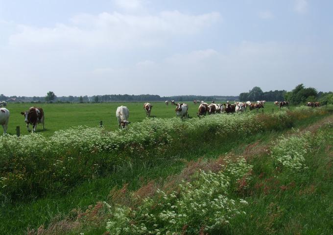 Zandloper - Heeten naar Soestwetering