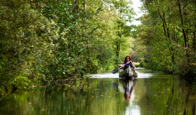 What makes canoeing so healthy?