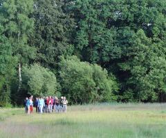 Wandeling 'Bomen en struiken' Dal van de Mosbeek