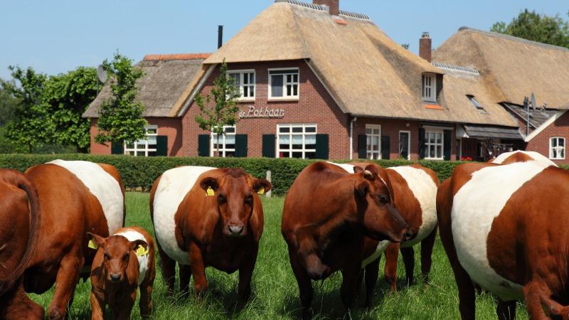 Museumboerderij & Boerderijkamers De Pothaar