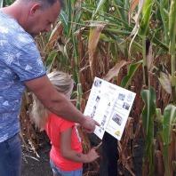 Maisdoolhof bij Kinderboerderij Dondertman weer open