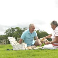 Nazomeren met picknick in de Vreugderijkerwaard