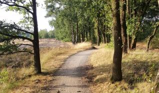 Noaberroute 49 km
