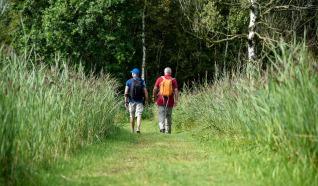 Langs Weren, Ribben en Dijken 14 km