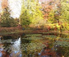 Natuurwerkochtend Het Hulsbeek