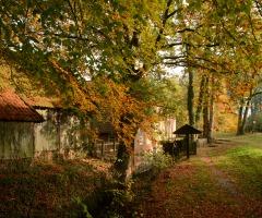 Excursie boerderijen en watermolens