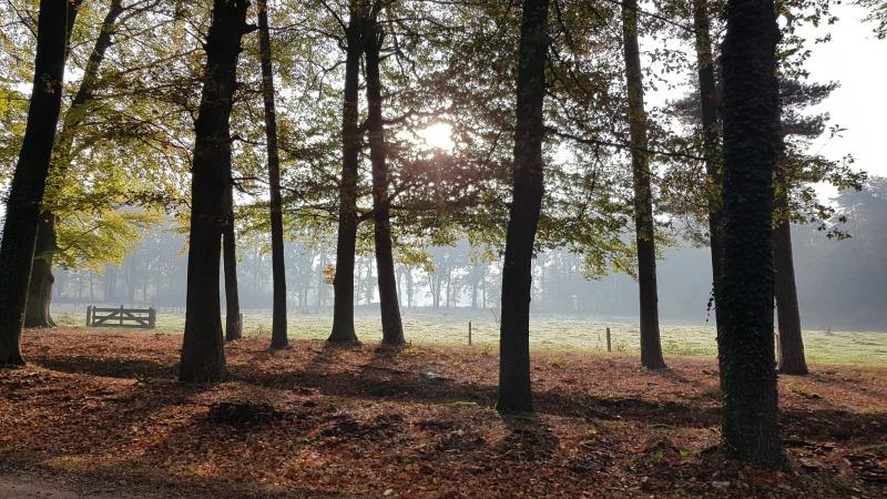 Boerenland wandeltocht 13,5 km