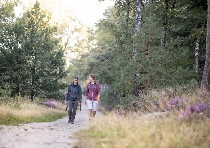 Sallandse Zandloper van Nijverdal naar Haarle