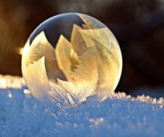 Winterwandeling Dal van de Mosbeek