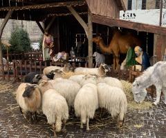 Kerstdorp Denekamp