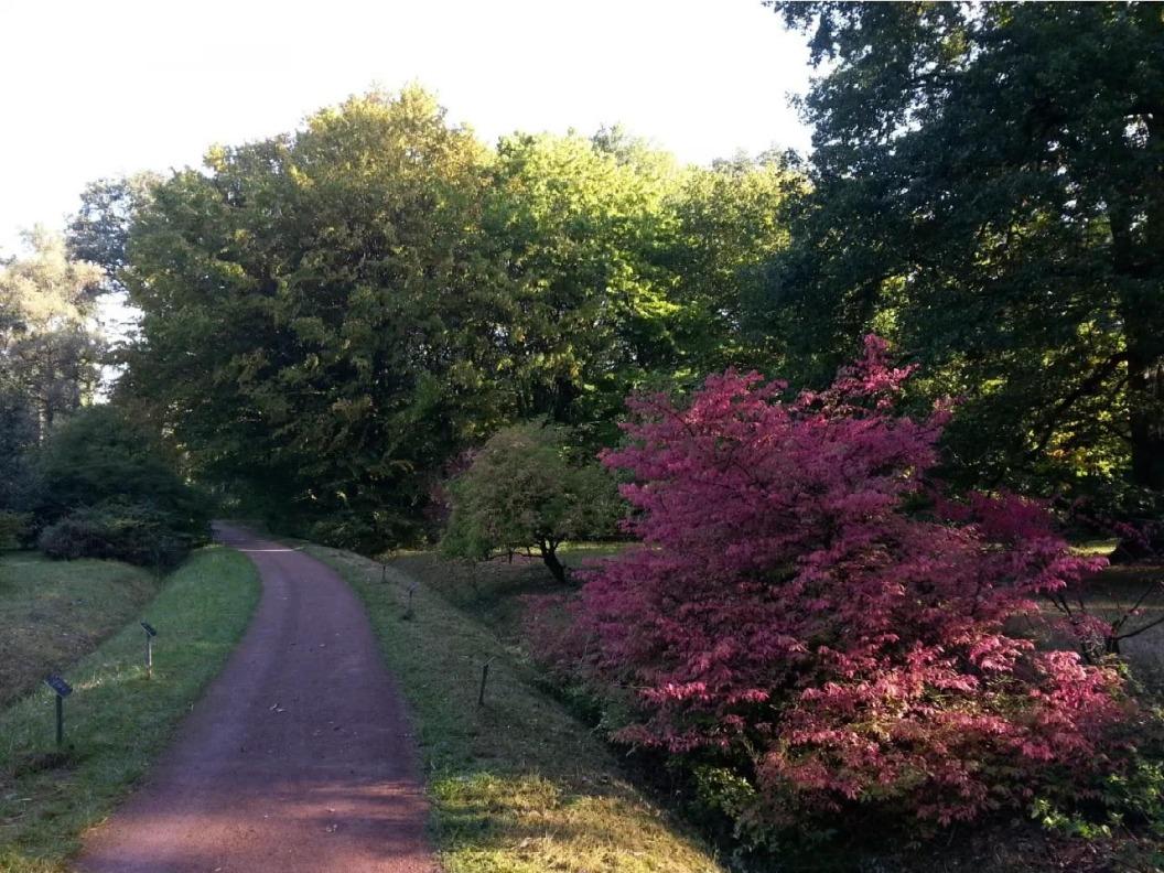 Arboretum Poort-Bulten