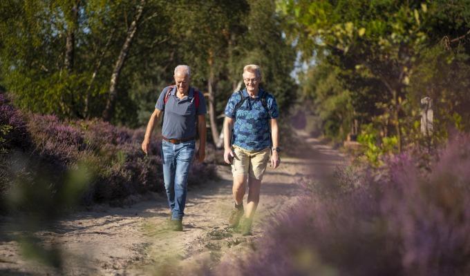 De 3 mooiste gratis wandelroutes in Enschede om Twente te ontdekken