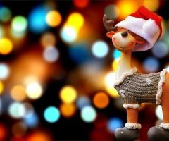 Kerstspeurtocht Losser
