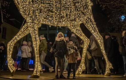 Kerstmarkt op het Lamme van Dieseplein