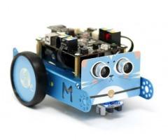 Workshop: Programmeer een robotje