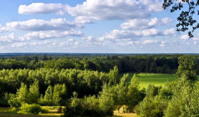 Een regionale rondwandeling; Het Twentepad