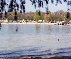 Workingtest Jachthondenwedstrijd Hulsbeek