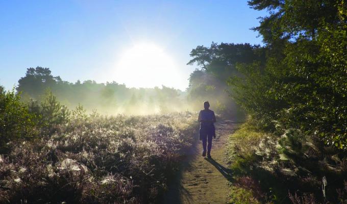 De mooiste wandelroutes in Haaksbergen om Twente te ontdekken