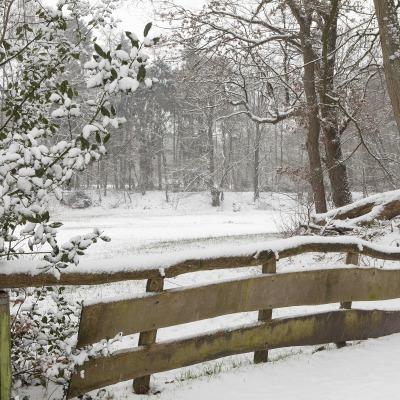 Winterwonderland Het Springendal