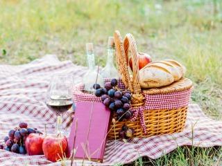 Goed gevulde picknicktas