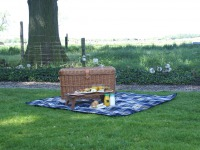 Picknick to go