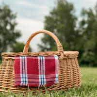 Picknicken in Zwolle