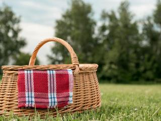 Genieten van een ontspannen picknick