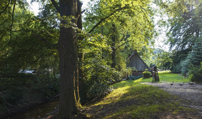 Wat maakt de natuur in Twente zo bijzonder? Tukkers aan het woord.