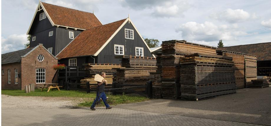 De houtzagerij Twickel bij Carelshaven